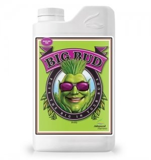 Big Bud 1lit