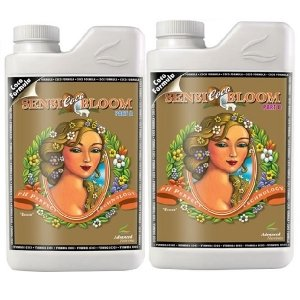 pH Perfect Sensi Coco Bloom A&B 1lit