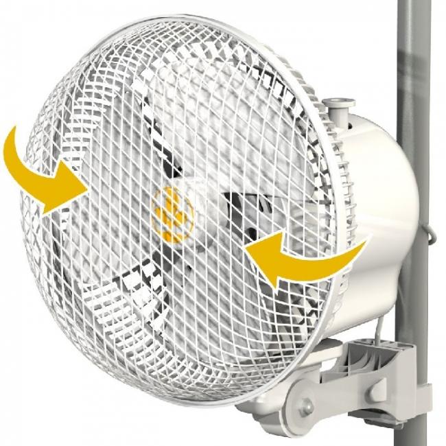 Monkey Fan 20W Oscillating