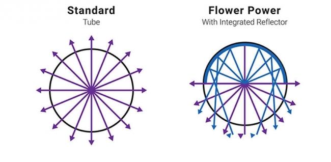 Flower Power UVR8